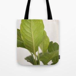 Hojas verdes (2) (green leafs) Tote Bag