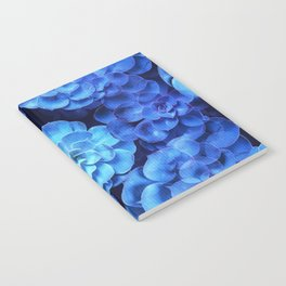 Succulent Plants In Blue Tones #decor #society6 #homedecor Notebook