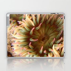 Anemone  Laptop & iPad Skin