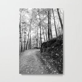 Forest black and white 6 Metal Print