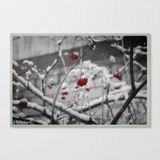 Last memories about winter... Canvas Print