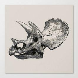 Dinosaur Skeleton Ink Pen Illustration Triceratops Canvas Print