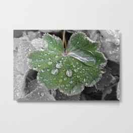 heavy rain Metal Print