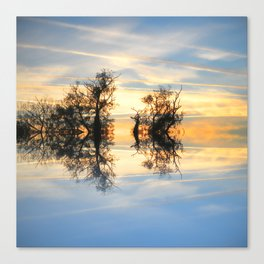 Criss Cross Skies Canvas Print