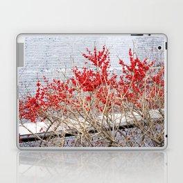 the high line Laptop & iPad Skin