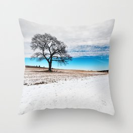 Divided Winter Throw Pillow