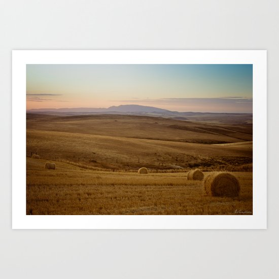 Wheat fields of the Overberg  Art Print