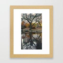 Reflect! Framed Art Print