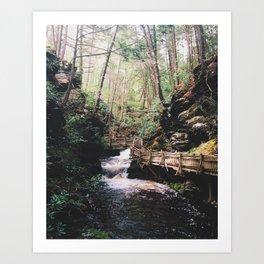 Bushkill Path Art Print