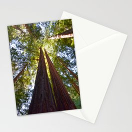California Redwoods Stationery Cards