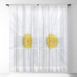 Sunshine daisy Sheer Curtain