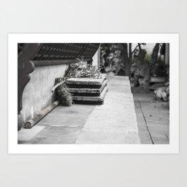 colorless shanghai9 Art Print