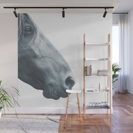 Horse head - fine art print n° 2, nature love, animal lovers, wall decoration, interior design, home Wall Mural