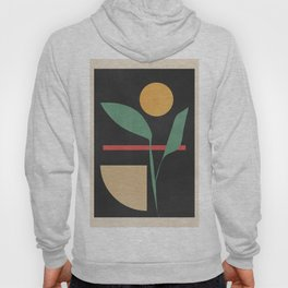 Geometric Shapes 102 Hoody
