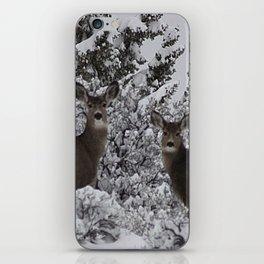 Mule Deer in the Oregon Snow iPhone Skin