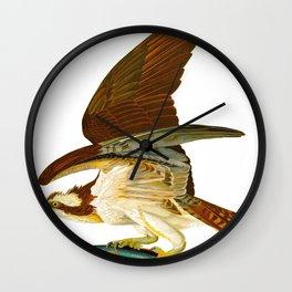 Osprey Bird Wall Clock