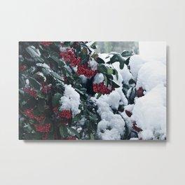 Winter and snow Metal Print