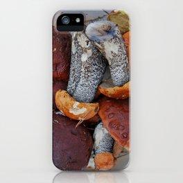 raw mushrooms iPhone Case