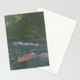 Quietly waiting. Stationery Cards