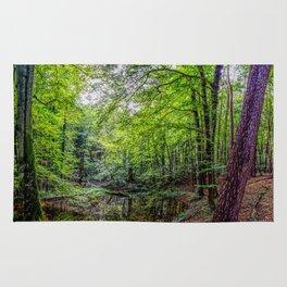 Forest Landscape Rug