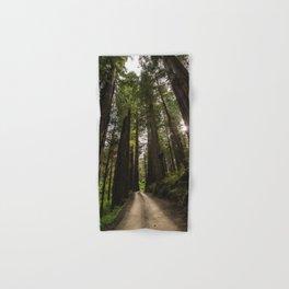 Redwoods Make Me Smile - Nature Photography Hand & Bath Towel