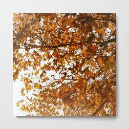 Unbe-leaf-able Metal Print