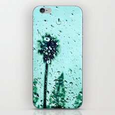 Trees amidst the rain drops. iPhone & iPod Skin