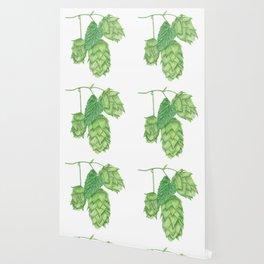 Beer Hop Flowers Wallpaper