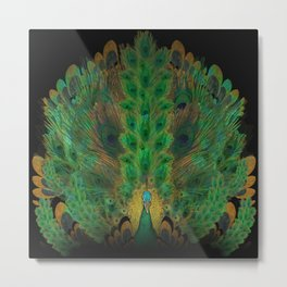 """Emerald and black peacock"" Metal Print"