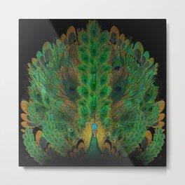 """""""Emerald and black peacock"""" Metal Print"""