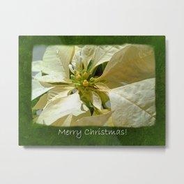 Pale Yellow Poinsettia 1 Merry Christmas P1F5 Metal Print