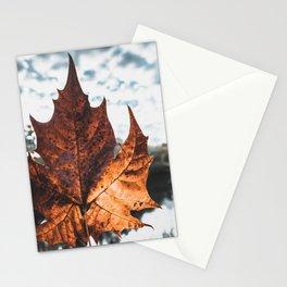 Big Leaf Stationery Cards