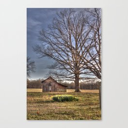 Barn in Spring Canvas Print