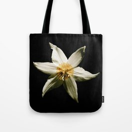Honey and the Moon Tote Bag