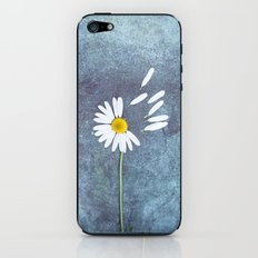 Daisy III iPhone & iPod Skin