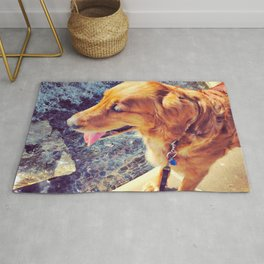 Beautiful dog golden retriever on the swimming pool Rug