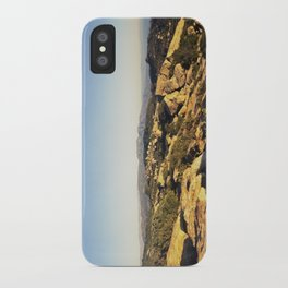Lizard's Mouth iPhone Case