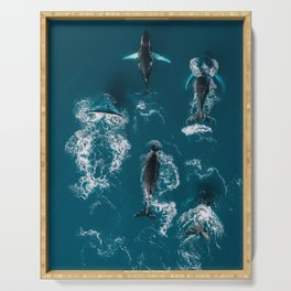 Humpback whales in the arctic ocean - Wildlife Aerial Serving Tray