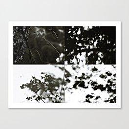untouchable Canvas Print