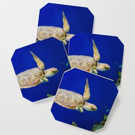 Sea Turtle 1 Marine Animal / Underwater Wildlife Photograph Coaster