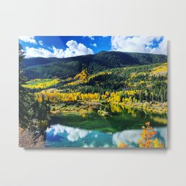 Fall in Aspen Colorado Metal Print
