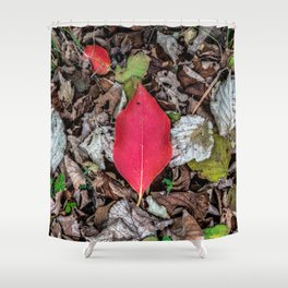 Persimmon tree red leaf Shower Curtain