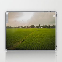 The Rice Paddies of Nepal 001 Laptop & iPad Skin