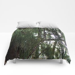 Sparkling Woods 10 Comforters