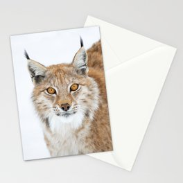 Phántasma Stationery Cards