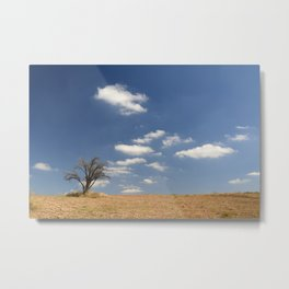 Clouds and tree... Metal Print