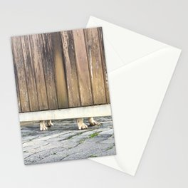 Paws Of A Waiting Bulldog Stationery Cards