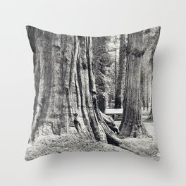 Big Trees of California Southern Pacific Throw Pillow