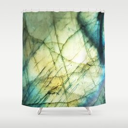 lab glory Shower Curtain