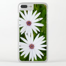 Beautiful White Daisies Clear iPhone Case